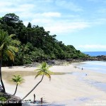 Itacaré - BA: Praia da Engenhoca um paraíso para prática de surf.