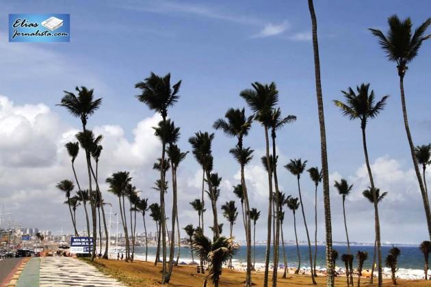 Praia de Jardim de Alah, Salvador BA, local onde profissionais de massagem atende os banhistas com coqueiral incorporado à paisagens da cidade.