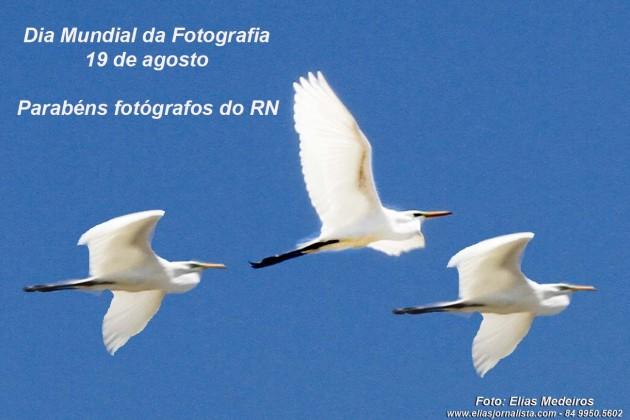 Dia Mundial da Fotografia – Parabéns fotógrafos do RN .